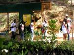 Fondes Amandes Community Reforestation Project in pictures