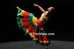 Decades of Dance, Dance Festival 2011