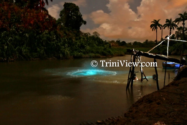 Ortoire River, only a few months ago drew curious visitors when due to the 'glowing river' plankton bloom phenomenon, observed here in Cedar Grove Village, Mayaro
