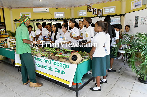 Students from St. Francois Girls College, Belmont check out a variety of vegetables and fruits
