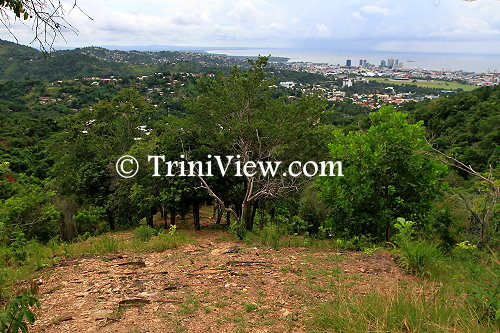 A nature trail up in the St. Ann's hills