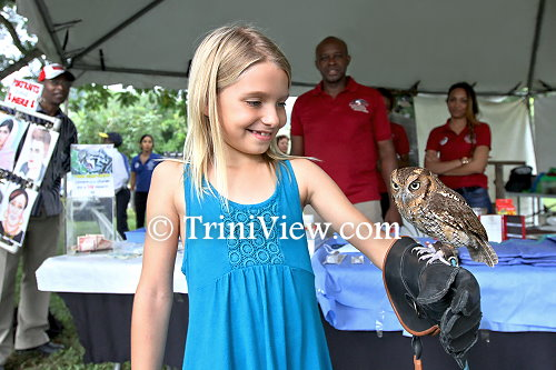 A young visitor admires one of the owls at the El Scorro Centre for Wildlife Conservation booth
